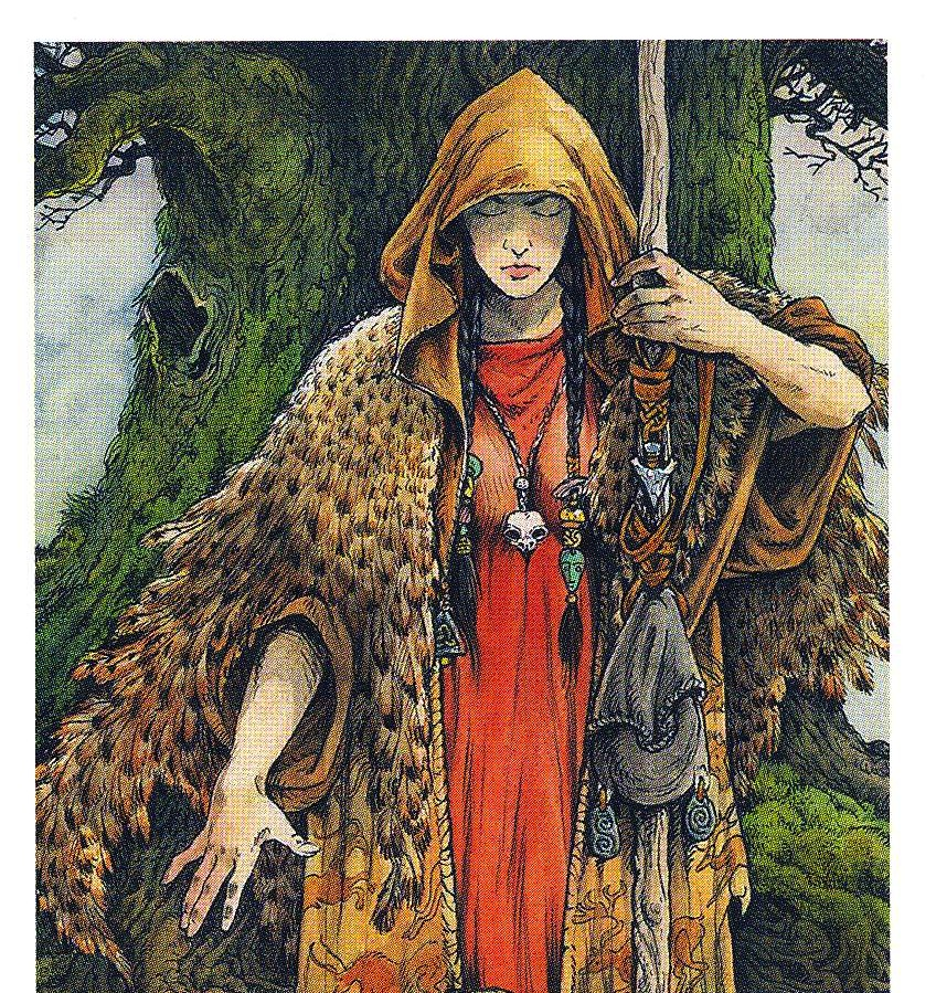 The Seer, From The Wildwood Tarot Deck
